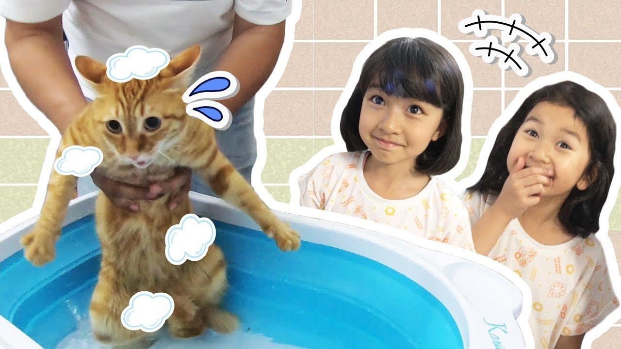 ネコちゃんが大冒険!冒険の後はお風呂だねっ!