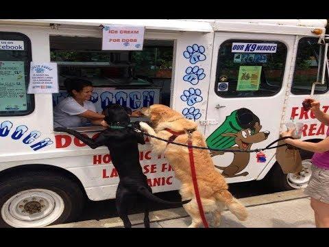 ぼくにもアイスクリームをちょうだい!!
